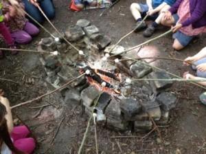 Toasting marshmallows round the campfire